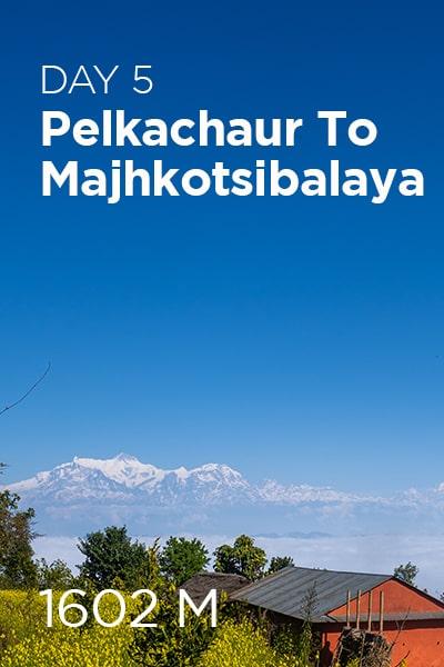 Day 5 Pelkachaur to Majhkotsibalaya